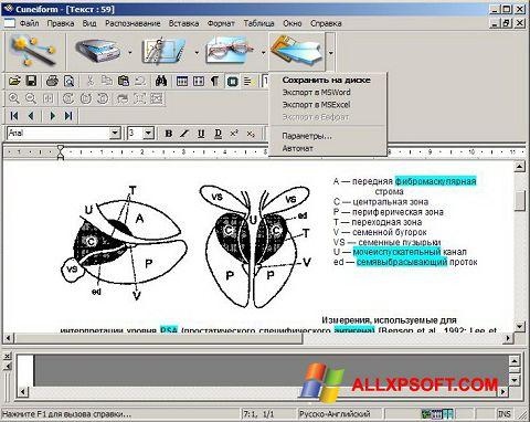 Снимка на екрана CuneiForm за Windows XP