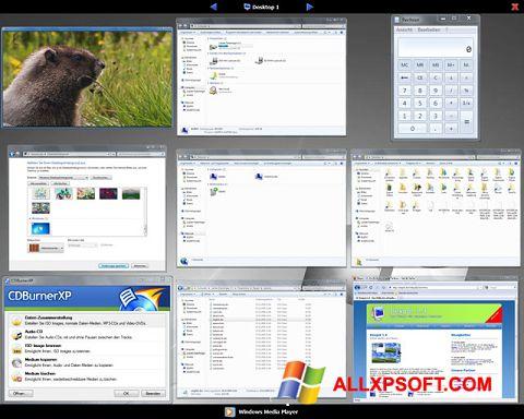 Снимка на екрана Dexpot за Windows XP