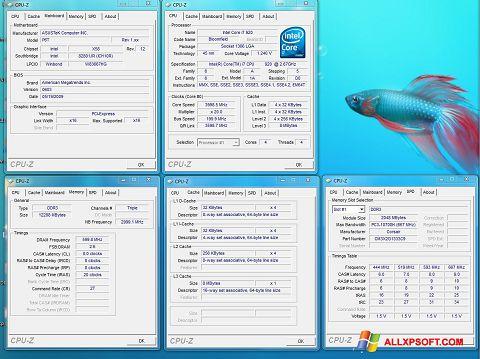 Снимка на екрана CPU-Z за Windows XP