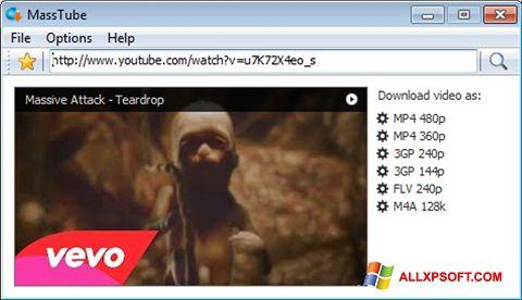 Снимка на екрана MassTube за Windows XP
