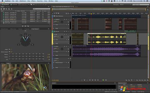 Снимка на екрана Adobe Audition за Windows XP